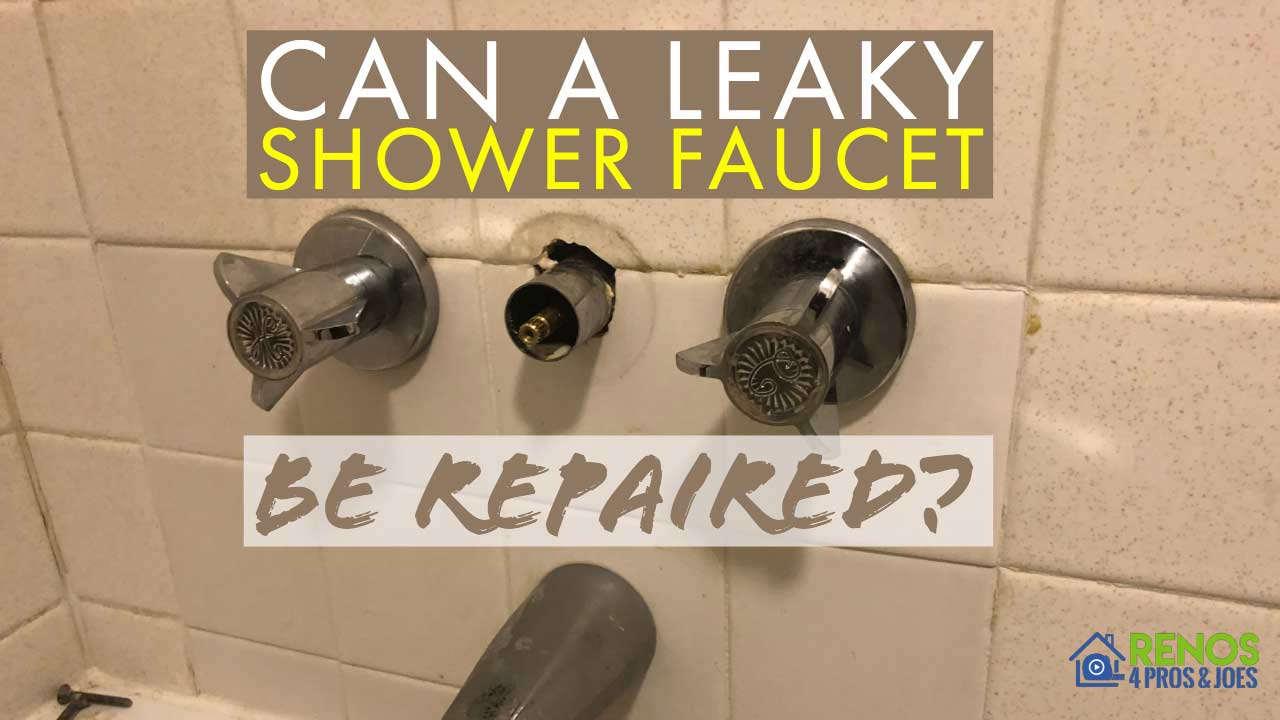 Can A Leaky Shower Faucet Be Repaired Renos 4 Pros Joes